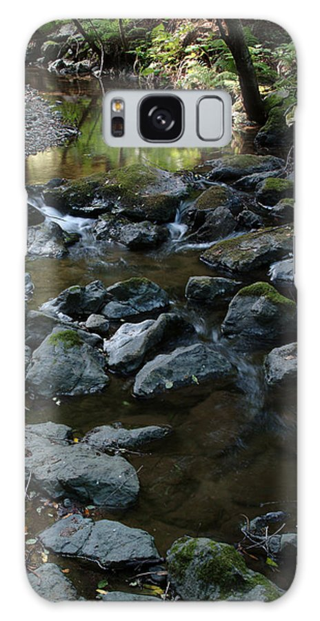 Redwood Creek Galaxy S8 Case featuring the photograph Redwood Creek by Wesley Elsberry