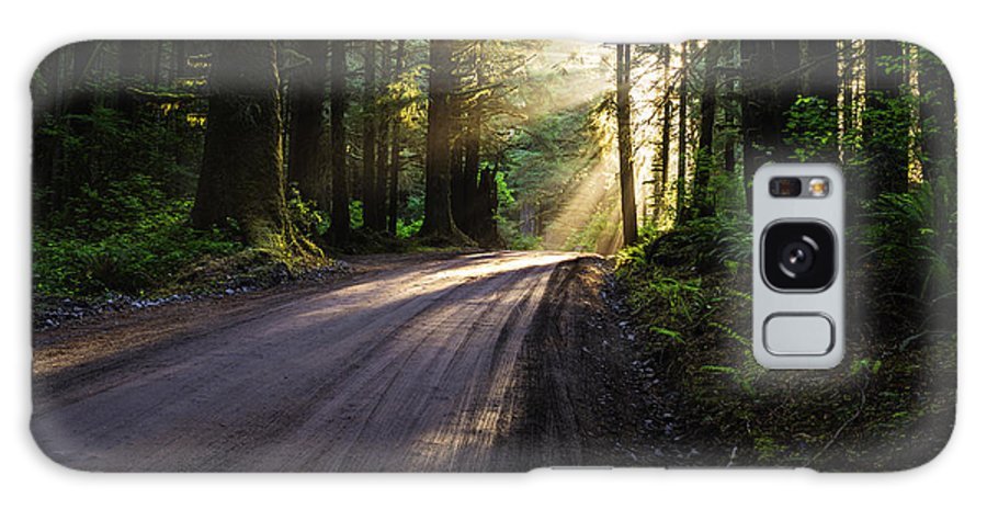God Rays Galaxy S8 Case featuring the photograph Redwood Magic by Vishwanath Bhat