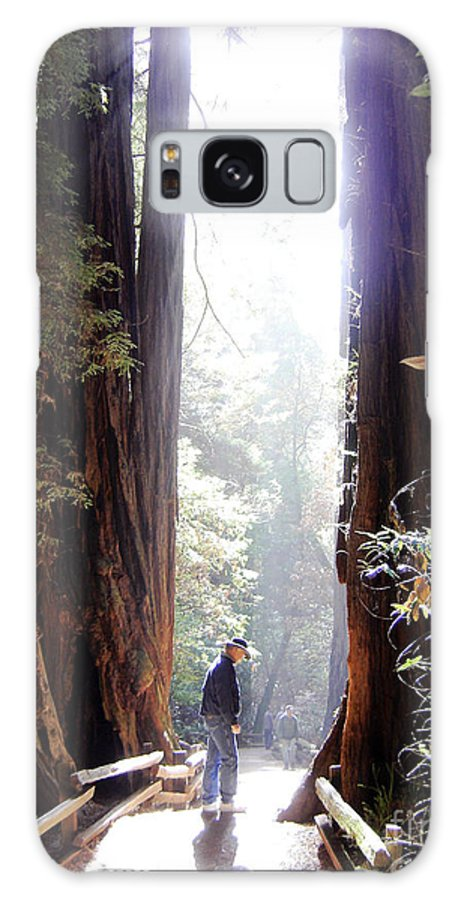 Pathway Galaxy S8 Case featuring the photograph Redwood Path by Mary Rogers