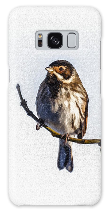 Reed Bunting Galaxy S8 Case featuring the digital art Reed Bunting Emberiza Schoeniclus by Liz Leyden