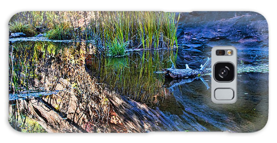 West Fork Trail Galaxy S8 Case featuring the painting Reflection In The Water by Brian Lambert