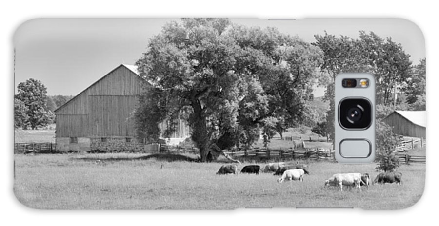 Barn Galaxy S8 Case featuring the photograph Reive Blvd Barn 15059b by Guy Whiteley