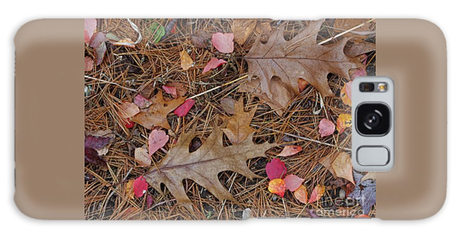 Leaf Galaxy S8 Case featuring the photograph Remainders by Ann Horn