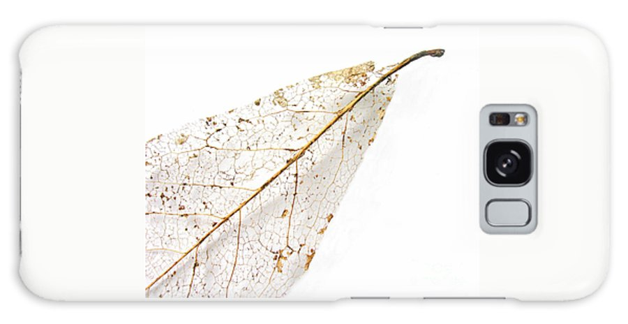 Leaf Galaxy Case featuring the photograph Remnant Leaf by Ann Horn