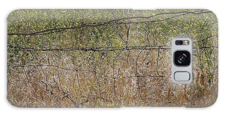 Nature Galaxy S8 Case featuring the photograph Resonate by Viktor Savchenko
