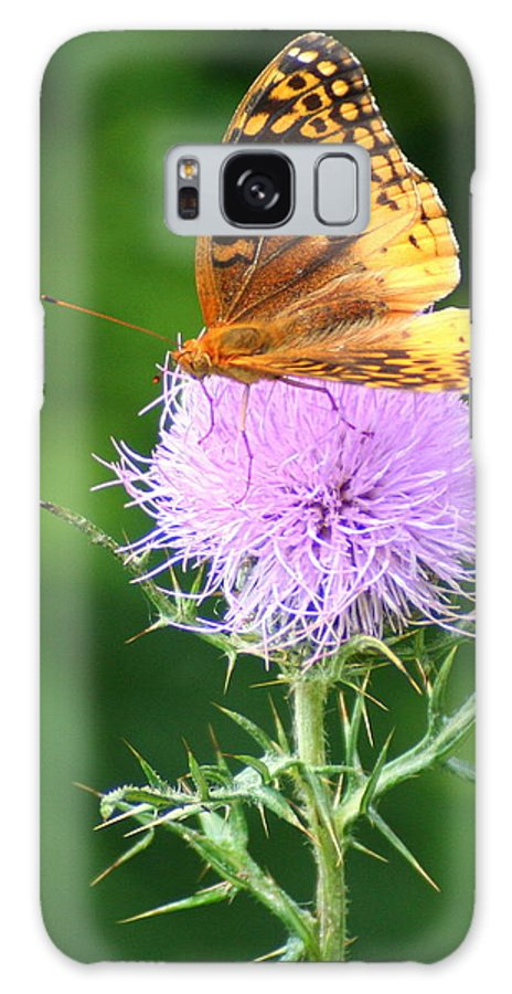 Thistle Galaxy S8 Case featuring the photograph Resting On A Thistle by Laurel Talabere