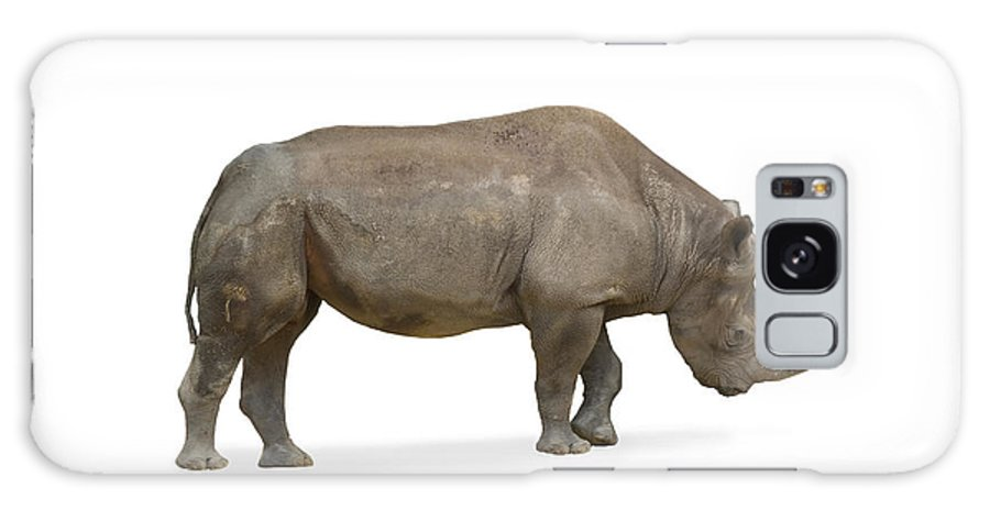 Rhinoceros Galaxy S8 Case featuring the photograph Rhinoceros by Charles Beeler