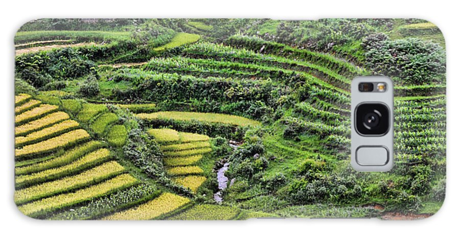 Sapa Galaxy S8 Case featuring the photograph Rice Fields Vietnam by Chuck Kuhn