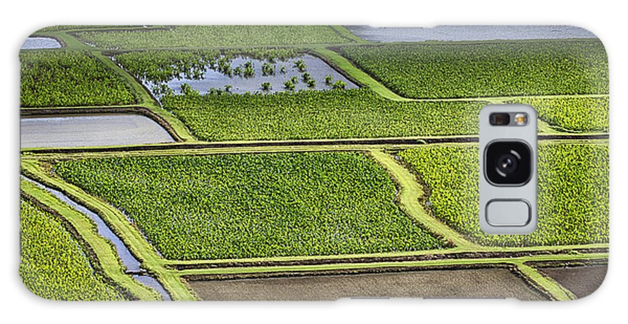 Hanalei Fields Of Taro Galaxy S8 Case featuring the photograph Rice Paddies by Douglas Barnard