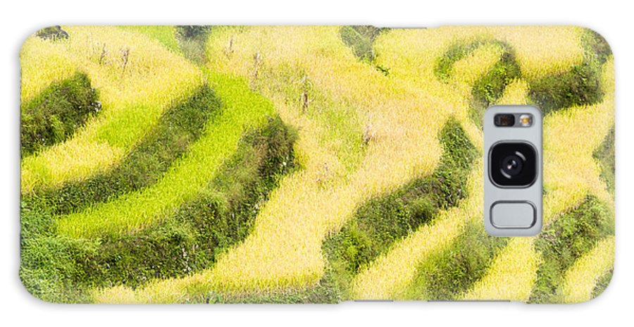 Countryside Galaxy S8 Case featuring the photograph Rice Terraces by Tuimages