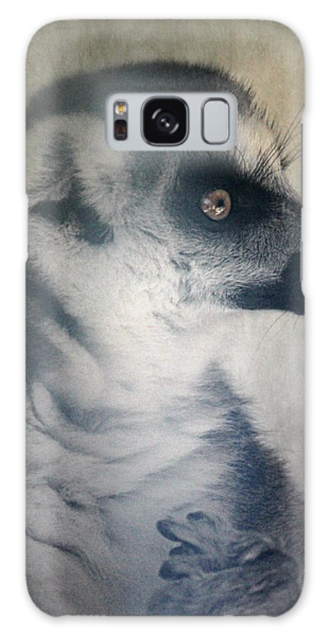 Ring Tailed Lemur Galaxy S8 Case featuring the photograph Ring Tailed Lemur by Melanie Lankford Photography
