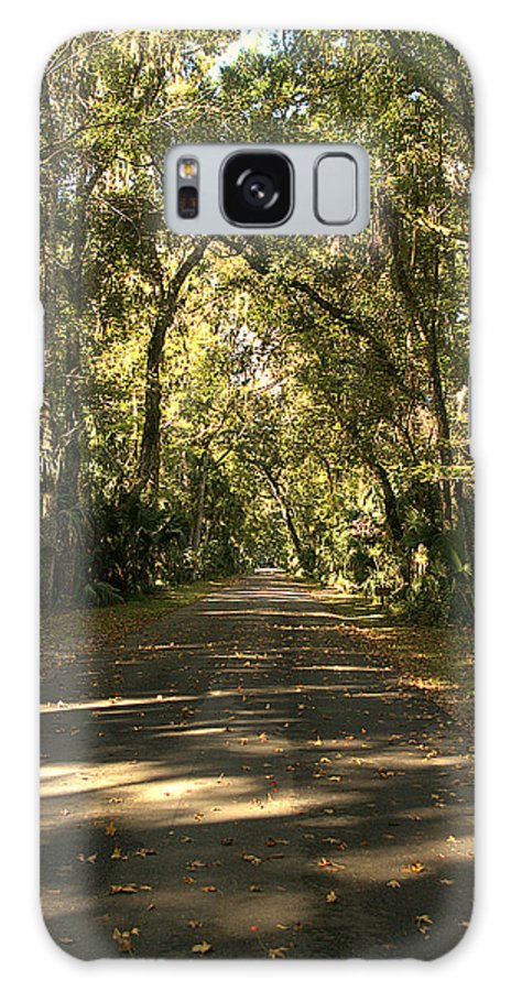 Hhsp Galaxy S8 Case featuring the photograph Road To The Enchanted Forest by Jen T