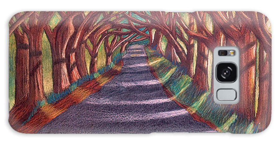 Colored Pencil Galaxy S8 Case featuring the drawing Road To The Unknown by Nancy McNamer