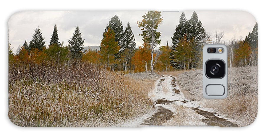 Road Galaxy S8 Case featuring the photograph Road To Winter by Todd Roach