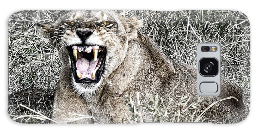Lion Roar Snarling Angry Kenya Africa Galaxy S8 Case featuring the photograph Roar by Wendy White