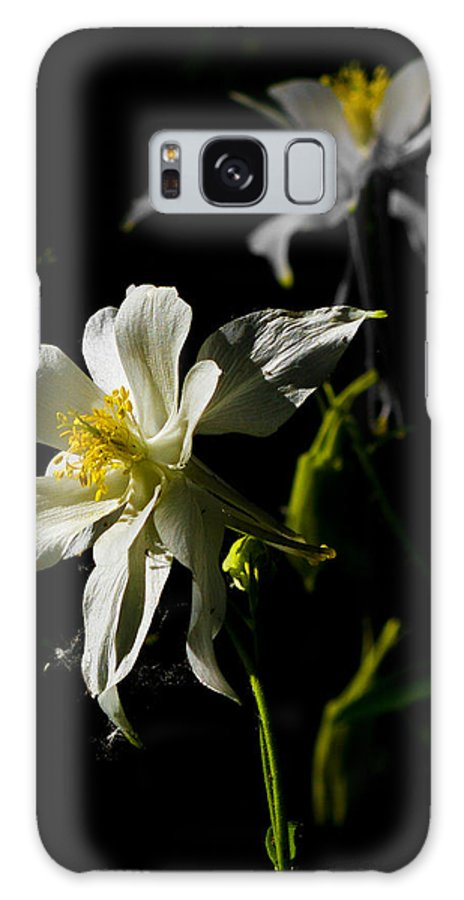Flower Galaxy S8 Case featuring the photograph Rocky Mountain Columbine by Bruce Lundgren