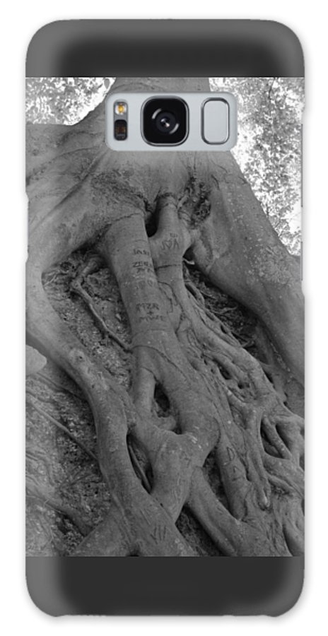 Tree Galaxy S8 Case featuring the photograph Roots II by Suzanne Gaff