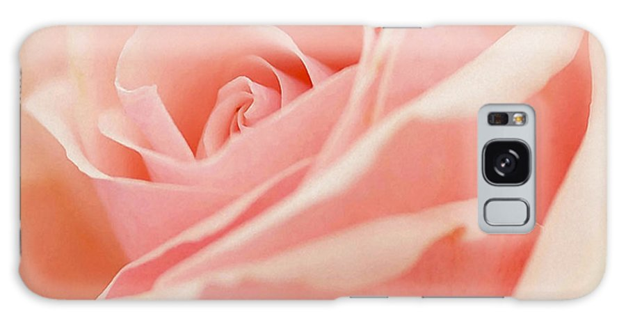 Rose Galaxy S8 Case featuring the photograph Rose 2 by Ingrid Smith-Johnsen