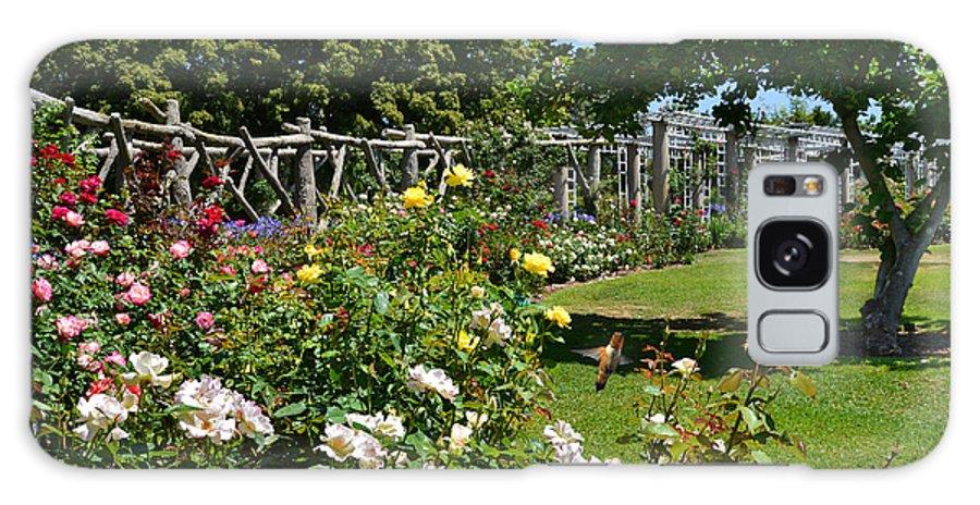 Tea House Galaxy S8 Case featuring the photograph Rose Garden And Trellis by Lynn Bauer