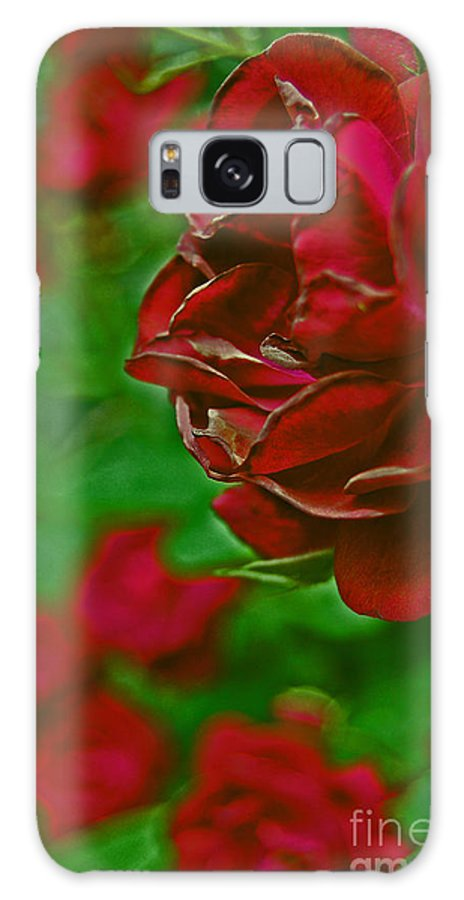 First Star Art Galaxy S8 Case featuring the photograph Rose Red By Jrr by First Star Art