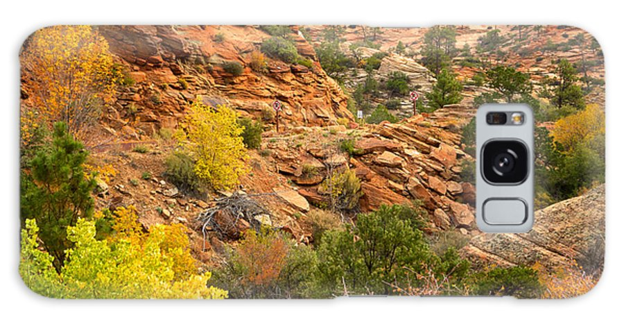 Rough Terrain Galaxy S8 Case featuring the photograph Rough Terrain In Autumn Along Zion-mount Carmel Highway In Zion Np-ut by Ruth Hager