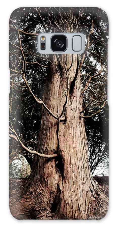 Rouken Glen Galaxy S8 Case featuring the photograph Roukenglentree by Dominique De Leeuw