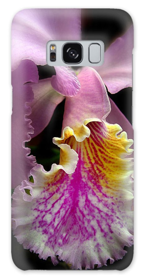 Flowers Galaxy S8 Case featuring the photograph Ruffled by Jessica Jenney