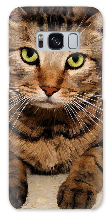 Brown Tabby Galaxy S8 Case featuring the photograph Sad Face by Joyce Baldassarre