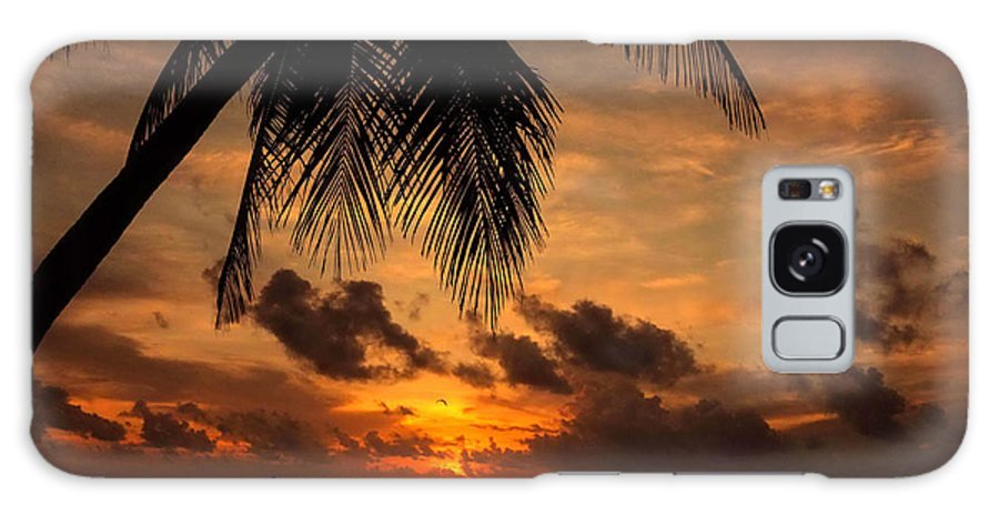 Palm Galaxy S8 Case featuring the photograph Salida Del Sol by Jim Southwell