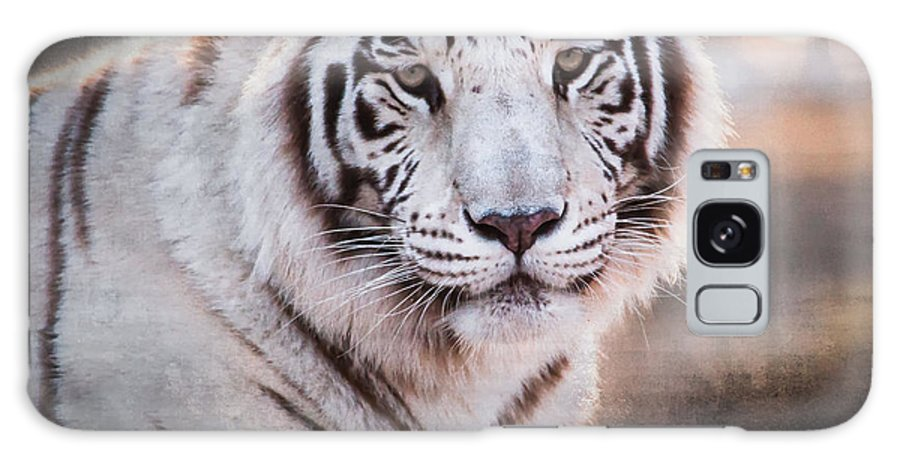Tiger Galaxy S8 Case featuring the photograph Samara 3 by Diane Wood