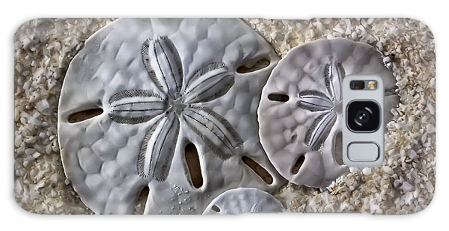 Sand Galaxy S8 Case featuring the photograph Sand Dollars 2106 by Walt Foegelle