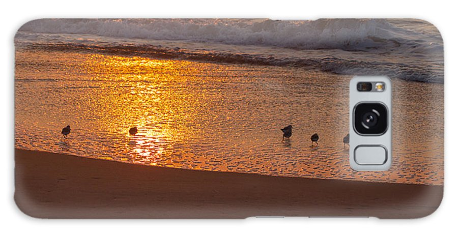 Accomack County Galaxy S8 Case featuring the photograph Sanderlings At Sunrise by Scott Bush