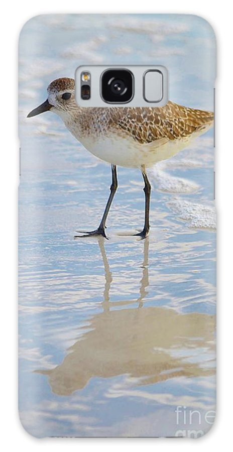 Shore Birds Galaxy S8 Case featuring the photograph Sandpiper Reflection by Carol McGunagle