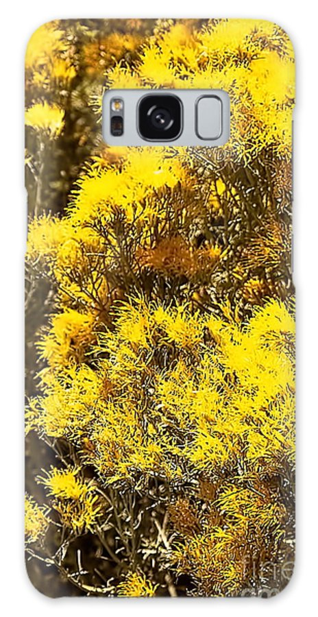 Color Photo Galaxy S8 Case featuring the digital art Santa Fe Yellow by Tim Richards