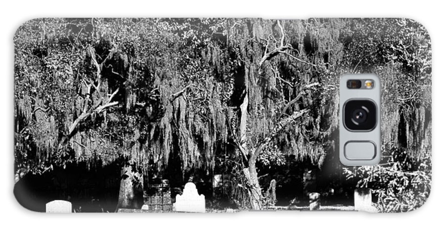 Savannah Resting Place Galaxy S8 Case featuring the photograph Savannah Resting Place by John Rizzuto