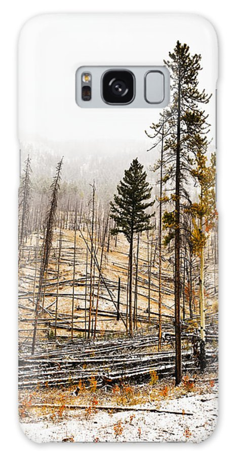 Light Galaxy S8 Case featuring the photograph Sawback Burn, On Bow Valley Parkway by Ken Gillespie