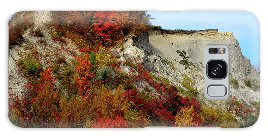 Fall Landscape Galaxy S8 Case featuring the photograph Scarborough Bluffs In Colour by Laura Yamada