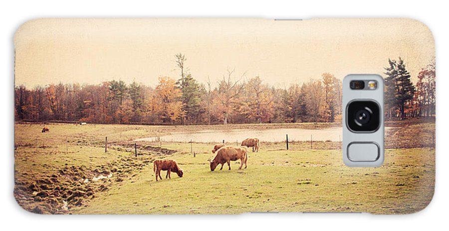 Cows Galaxy S8 Case featuring the photograph Scottish Highland Cattle by Erin Johnson