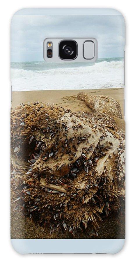 Ocean Galaxy S8 Case featuring the photograph Sea Creature by Danica Stewart