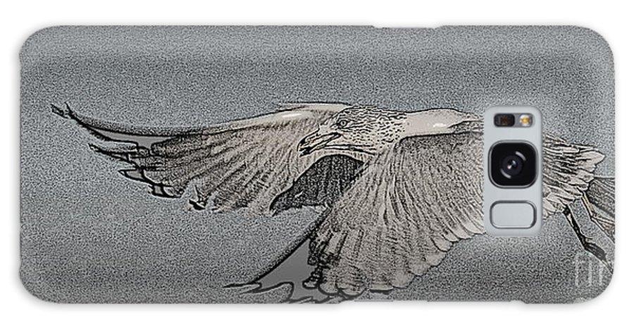 Sea Gull Galaxy S8 Case featuring the photograph Sea Gull by Bren Thompson