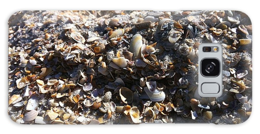 Shells Galaxy S8 Case featuring the photograph Sea Shells by Marian Palucci-Lonzetta