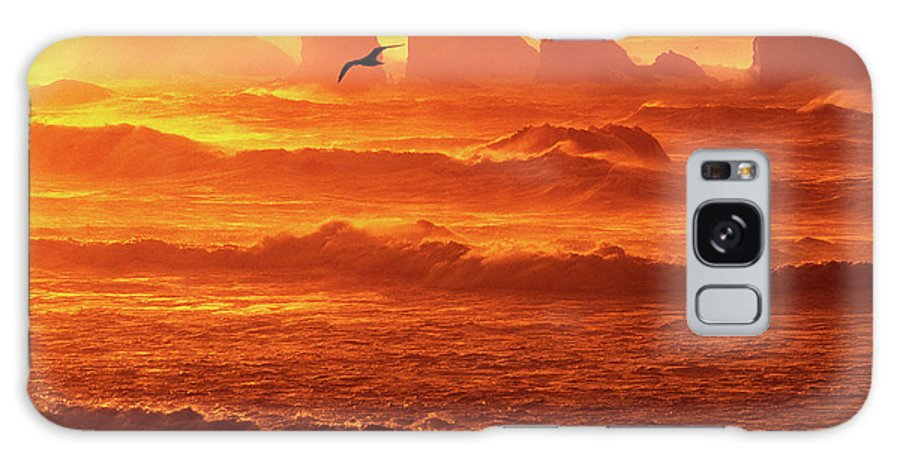 Oregon Galaxy S8 Case featuring the photograph Seagull Soaring Over The Surf At Sunset Oregon Coast by Dave Welling