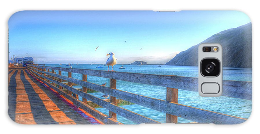 Seagulls Galaxy S8 Case featuring the photograph Seagulls And Ocean by Mathias