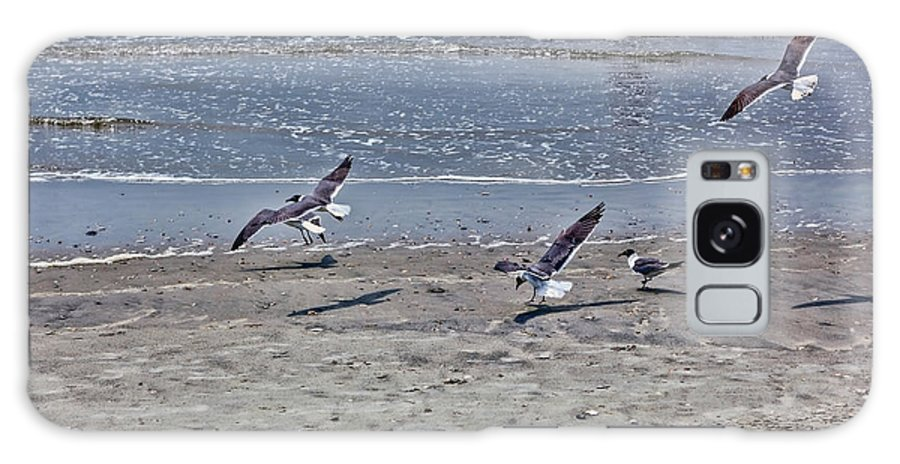 Beach Life Guard Galaxy S8 Case featuring the photograph Seagulls On The Beach by Sennie Pierson