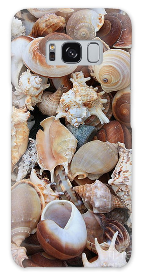 Shell Galaxy S8 Case featuring the photograph Seashells - Vertical by Carol Groenen