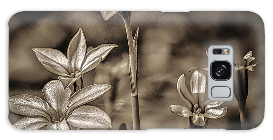 Sepia Galaxy S8 Case featuring the photograph Sepia Dreams by Scott Hervieux