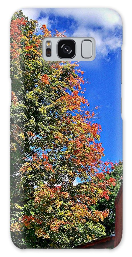Fall Galaxy S8 Case featuring the photograph September Morn by Barbara S Nickerson