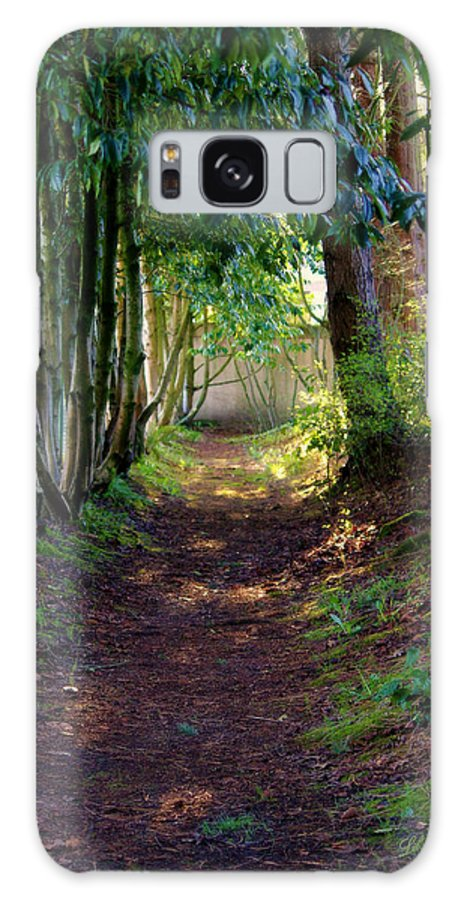 Yashiro Garden Galaxy S8 Case featuring the photograph Serene Garden Path by Jeanette C Landstrom