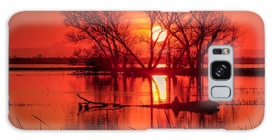 Merced National Wildlife Refuge Galaxy S8 Case featuring the photograph Setting Sun by Beth Sargent