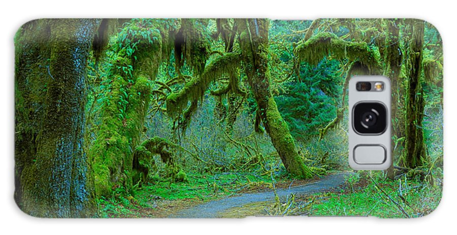 Tree Galaxy S8 Case featuring the photograph Shag Carpet by Jim Southwell